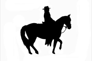 pferd schwarz